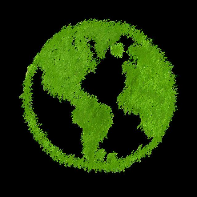 prodcutos biodegradables en la limpieza