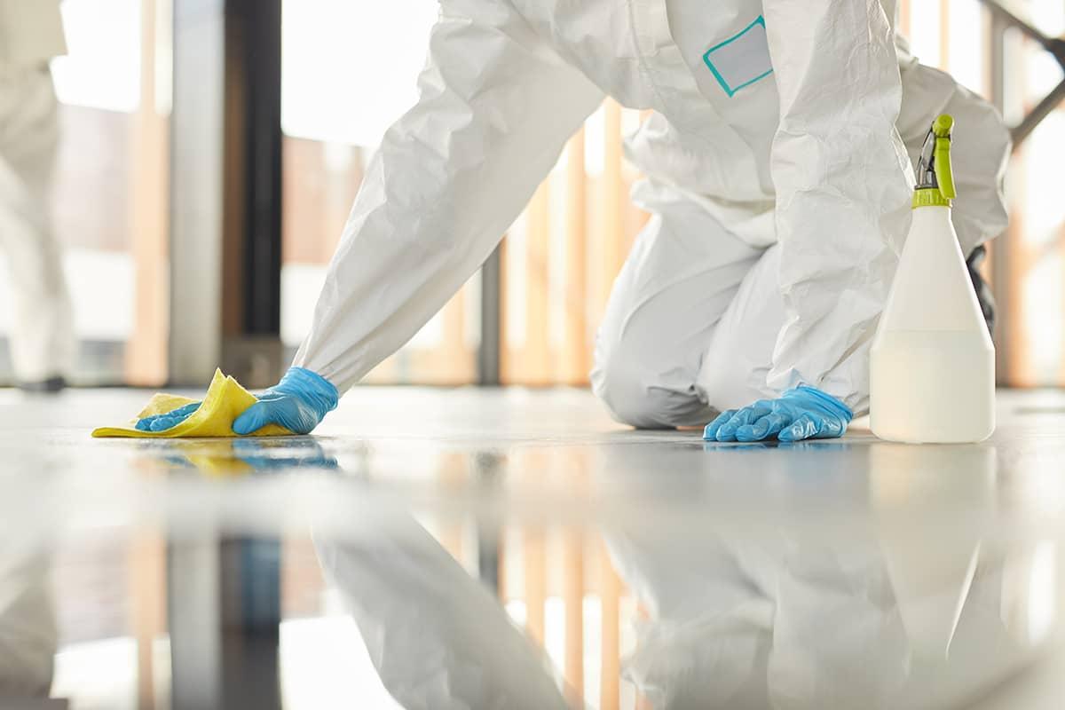 empresas de limpieza profesional